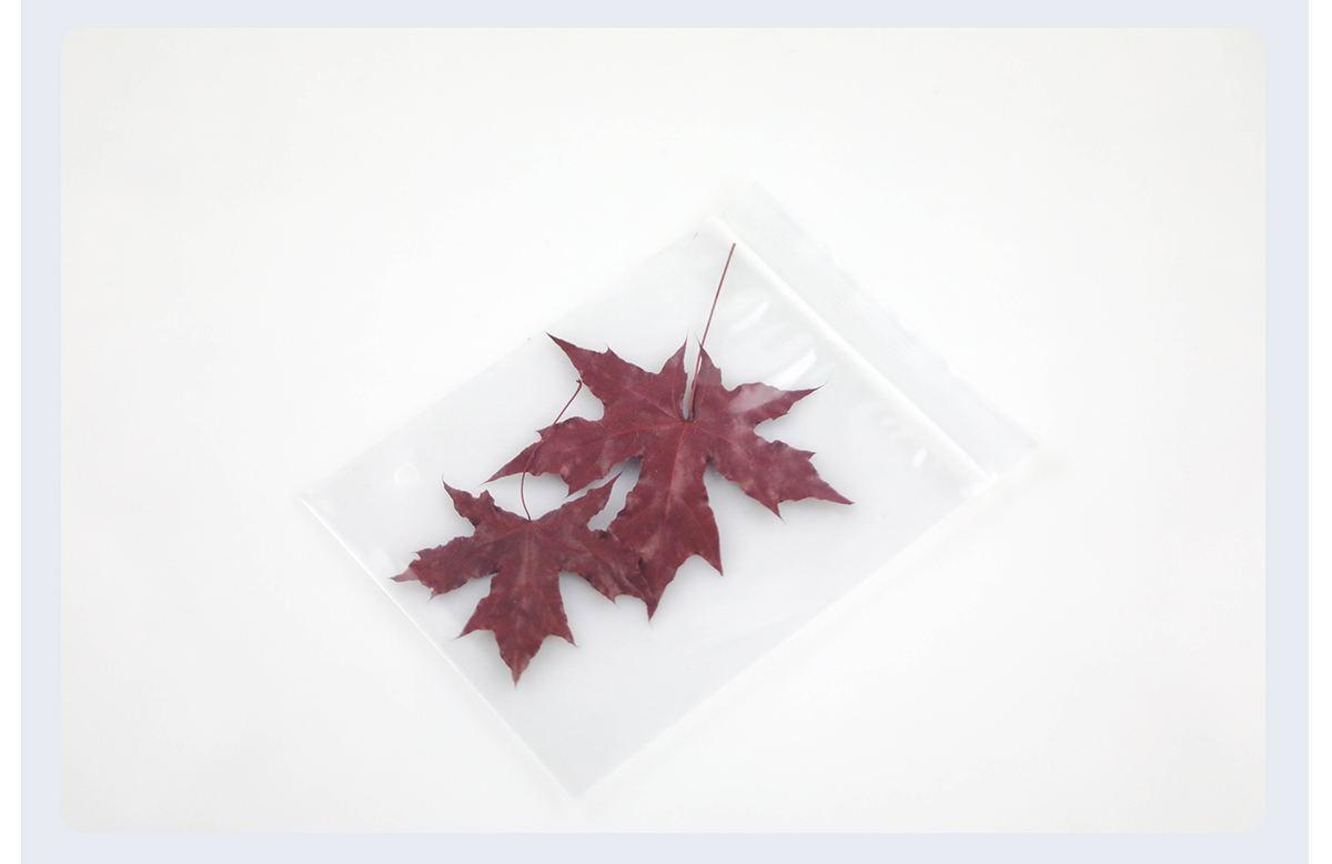 Opp Self Adhesive Clear Plastic Bag